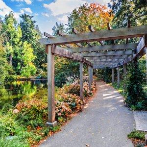 CA.Victoria.Beacon_Hill_Park Weg umrandet einen See im grünen Beacon Hill Park in Victoria
