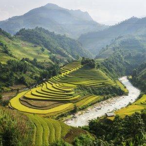 VN.Sa_Pa Der Blick auf die grünen Reisterrassen.