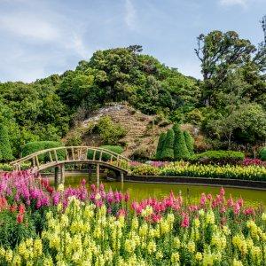 """Brücke in mitten des blühenden Gartens am Gipfel des """"Doi Inthanon"""" in Thailand"""