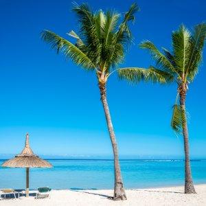 MA.Flic en Flac Strand Zwei Palmen und Liegestuhl am Strand von Flic en Flac mit glasklarem blauen Wasser und strahlend blauem Himmel