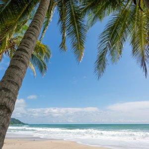 CR.Mal_Pais_Santa_Teresa_Playa_Carmen Der Blick durch Palmenblätter auf den weißen Sandstrand von Playa Carmen.
