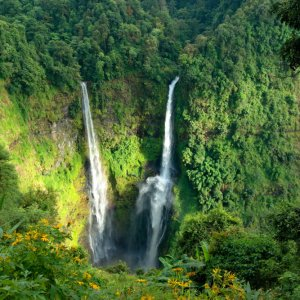 LA.Pakse_Bolaven-Plateau Der Blick auf die paradiesischen Wasserfällen des Bolaven-Plateaus in der Nähe der Stadt Pakse, Laos.