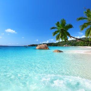 """SC.Praslin.Anse_Lazio Kristallklares blaues Wasser am tropischen Strand """"Anse Lazio"""" auf der Insel Praslin, Seychellen"""