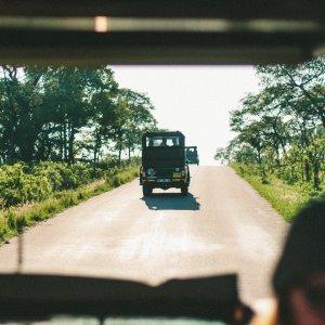 Südafrika.Safari.Jeeps