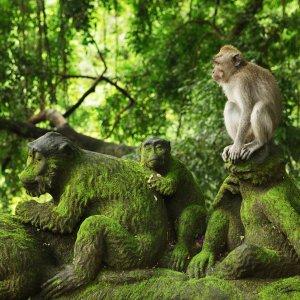 Bali.Ubud.Affentempel Affen sitzt auf einer Affenstatue im Dschungel