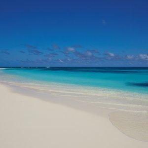 SC.Bird_Island_Beach Der Blick auf den Sandstrand mit türkisblauem Meer.