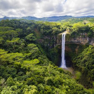 MU.Suedkueste.Chamarel Chamarel-Wasserfall im Tropendschungel von Mauritius aus der Vogelperspektive