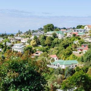 NZ.Napier Der Blick auf die grüne und farbenfrohe Stadt Napier.