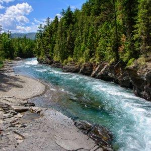 CA.Glacier National Park Bach Plätschernder Bachverlauf im Tannengrün vom Glacier Nationalpark, Kanada