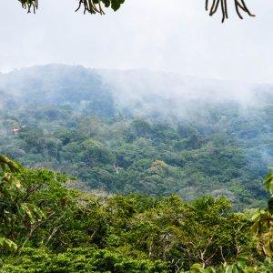 CR.Monteverde_Santa_Elena_Nebelwald Der Blick auf die Landschaft im Nebelwald Monteverde.