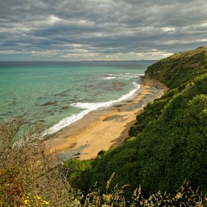 NZ.Oamaru_Bushy_Beach Der Blick auf die grüne Bucht des Bushy Beach.