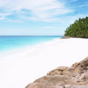 SC.Frégate_Island Der Blick auf weißen Sandstrand mit türkisblauem Meer und grünen Palmen im Hintergrund.