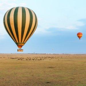 KE.Masai Mara