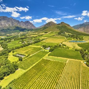 ZA.Franschhoek Weinanbau Die grüne Wein- und Berglandschaft in Franschhoek