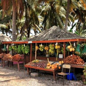 OM.Salalah_Obststand Zwei prall gefüllte Obststände unter Palmen in Salalah im Oman