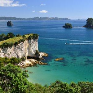NZ.Coromandel_Halbinsel_Bay Der Blick vom Ufer auf die steinig grünen Felsen und das klare Wasser.