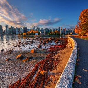Kanada Vancouver Skyline View Stanley Park Herbst