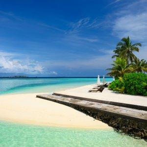 MV.Sued_Male_Atoll_Strand Paradiesischer Sandstrand am Süd Malé Atoll mit glasklarem Ozean und Palmen im Hintergrund, Malediven