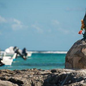 MX.AR.Riviera Maya Akumal Blick auf ein Schiff im Meer