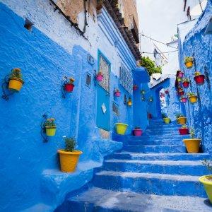 """MA.Chefchaouen.Blumengasse Kleine blaue Gasse mit Steintreppe und bunten Blumentöpfen in der Blauen Stadt """"Chefchaouen"""" in Marokko"""