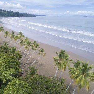 CR.Uvita_Dorf Der Blick durch die Palmen auf den Strand von Uvita im Marino Ballena Nationalpark in Costa Rica.