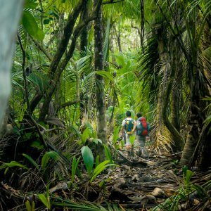 CR.Nationalpark Corcovado Wanderweg Wanderweg durch den Nationalpark Corcovado