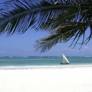 KE.Diani Beach.Strand