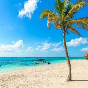 MX.POI.Yucatan Strand Ein Strand mit Palmen