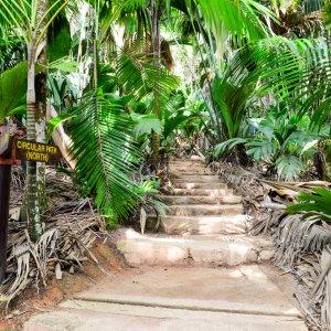 SC.Vallée_de_Mai_Nationalpark_Weg Eine beschilderte Wegabzweigung durch den Vallée de Mai Nationalpark auf den Seychellen