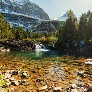 Kleiner See im lichten grünen Tannenwald vom Glacier Nationalpark, Kanada
