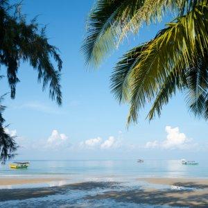 KH.Sihanoukville_Otres_Beach Der Blick zwischen Plamenblätter auf das Meer und den Otres Beach in Sihanoukville, Kambodscha.