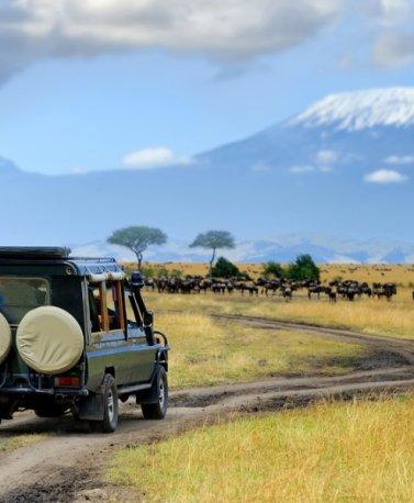 TZA.Serengeti.Safari-Jeep