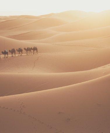 MAR.Merzouga_desert