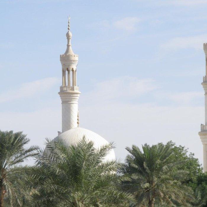 VAE.Al Ain.Minarette Palmen