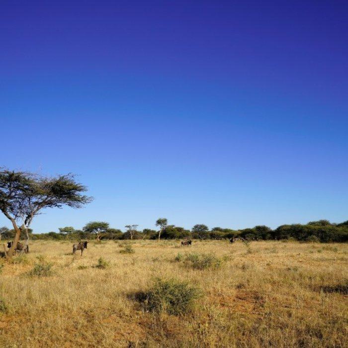 NAM.Okonjima Nature Reserve.Landscape