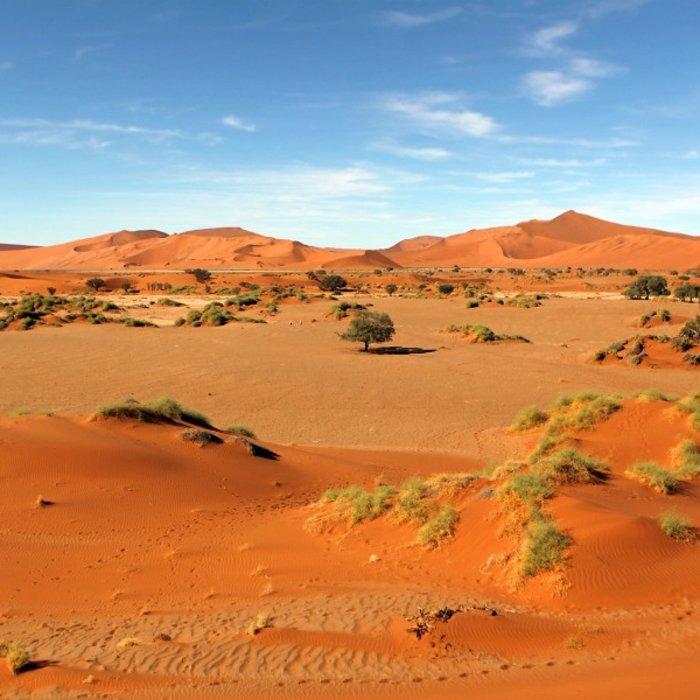 NAM.Namib Naukluft.Rote Düne
