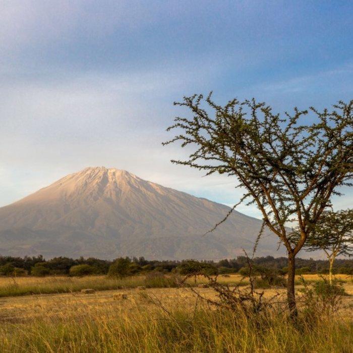 TZA.Arusha NP.Mount Meru