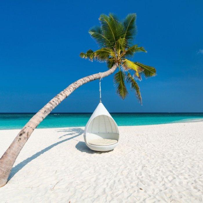 MDV.Weißer Strand mit Palme