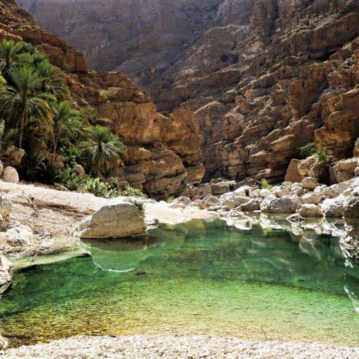 OMN.Wadi Shab.Oase grün