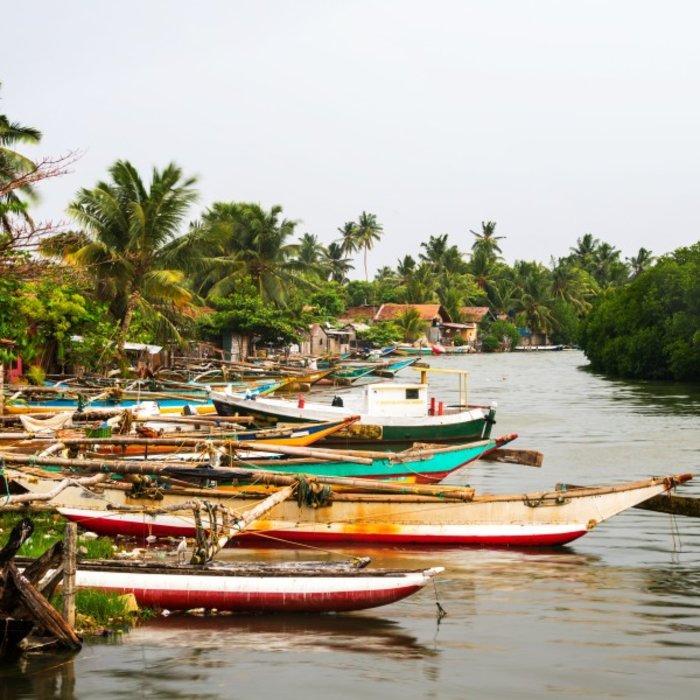 LKA.Negombo.Boote