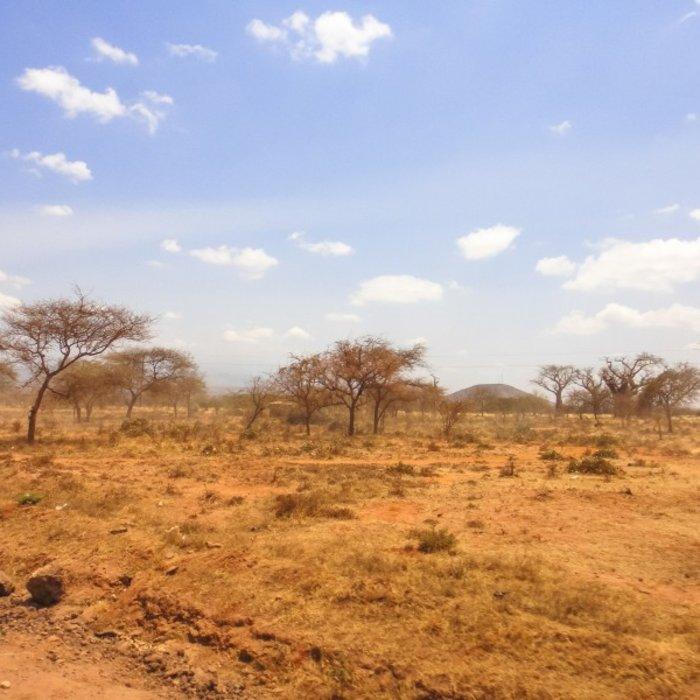 TZA.Moshi.Landschaft