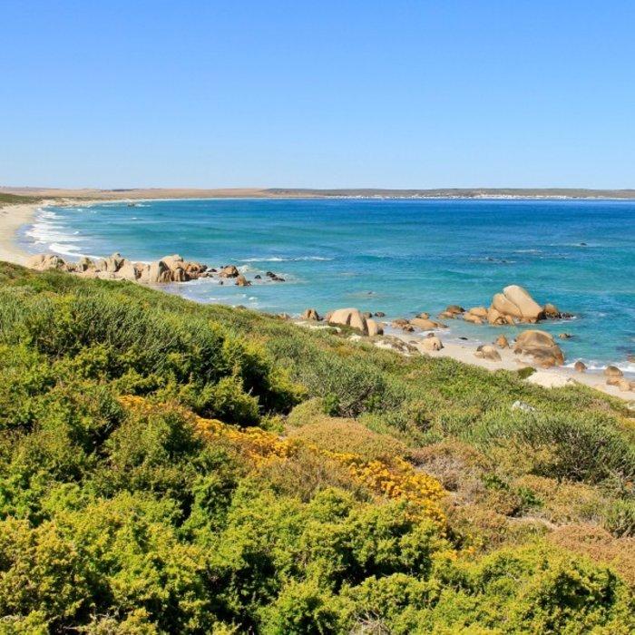ZAF.Paternoster coast