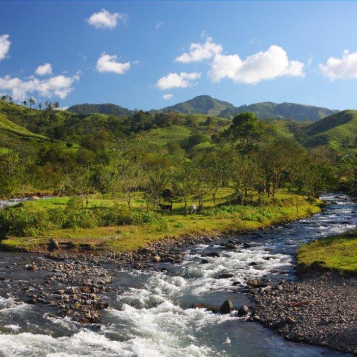 CRI.monteverde