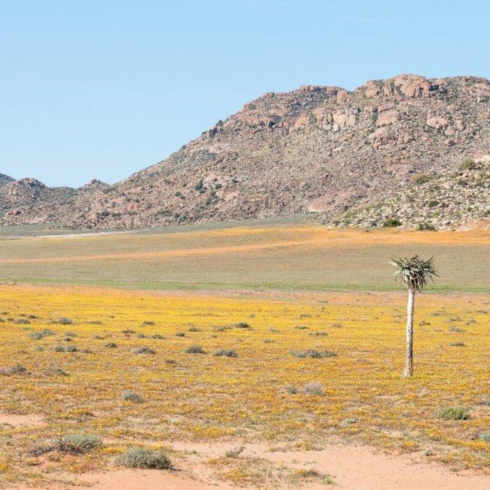 The Klipkoppie.Landscape