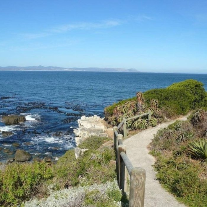 ZAF.Hermanus.The Whale Coast Hermanus