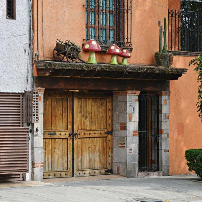 Coyoacán, Mexico City_2