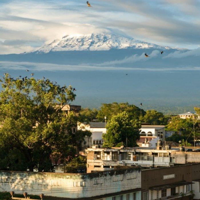 TZA.Moshi.Blick auf Kilimanjaro