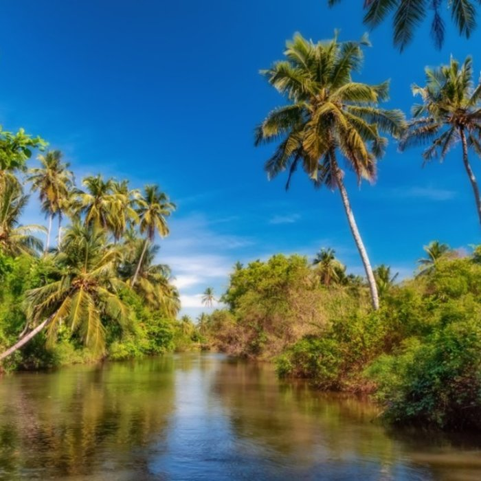 LKA.Dutch canal Negombo