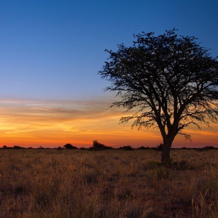NAM.Kalahari.Sonnenuntergang