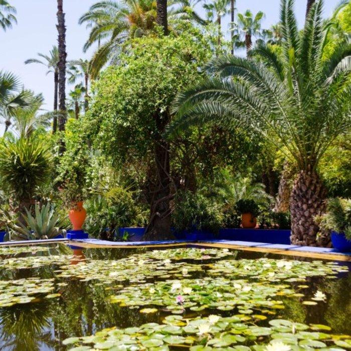 MAR.Marrakesch.Jardin Majorelle.Teich